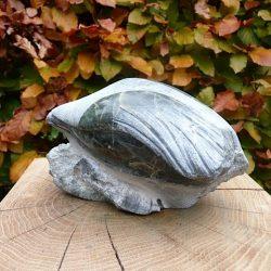 Sculptuur Rare Vogel
